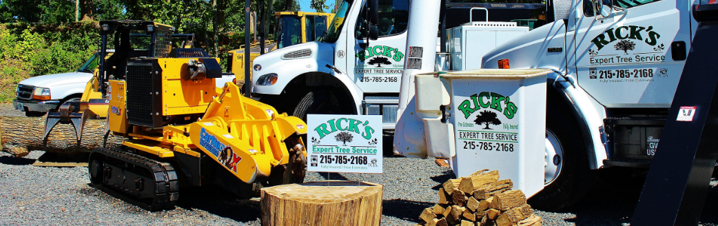 Rick's Expert Tree Service Bucks County